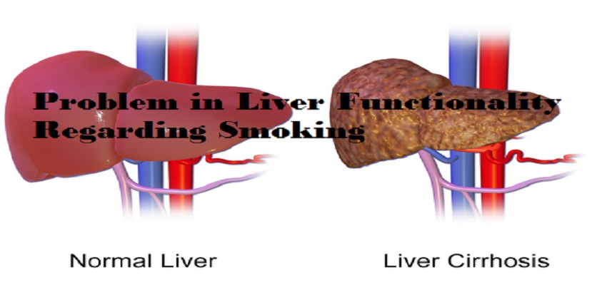Liver Functionality